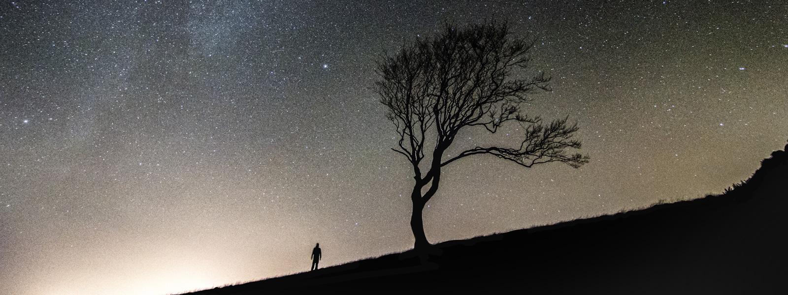 zvijezde